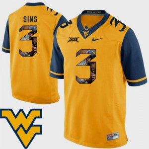 University #3 Pictorial Fashion Gold WV Charles Sims Jersey Men Football 173892-804